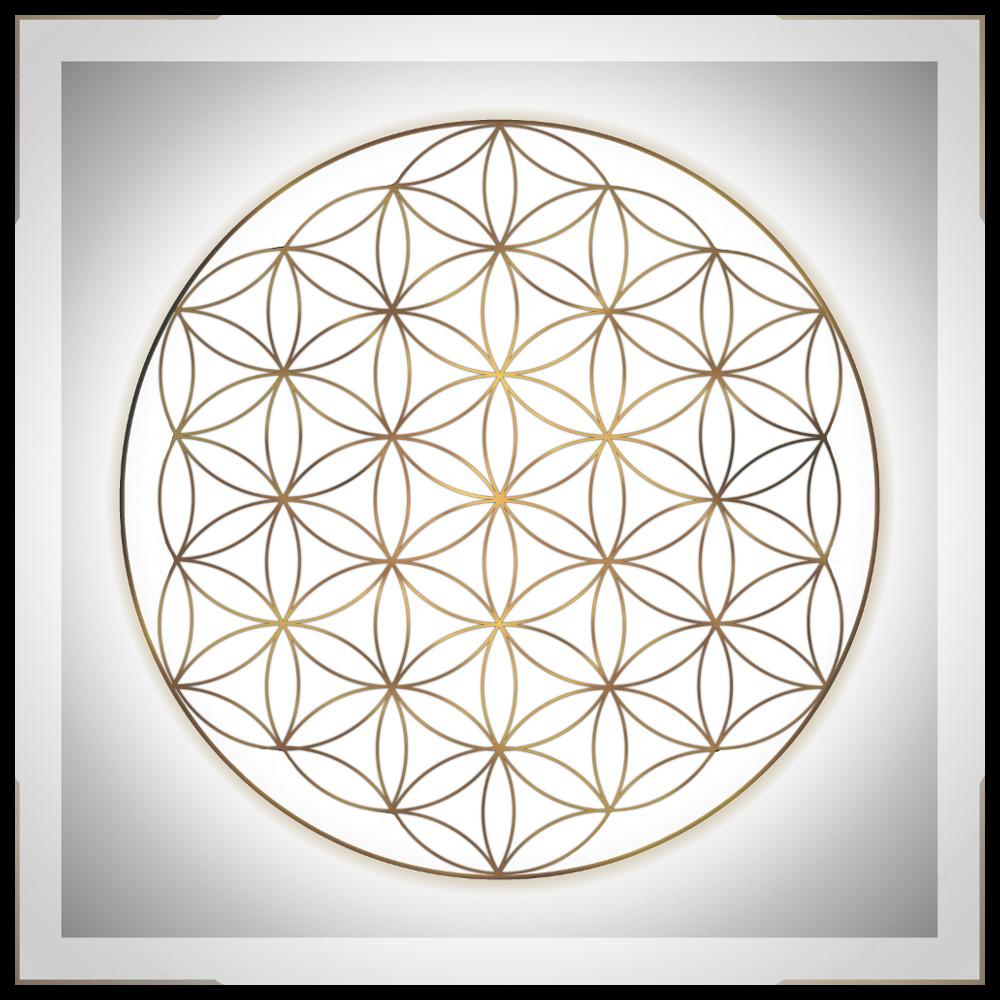 Instants Presents Panel Mandala Flower Of Life